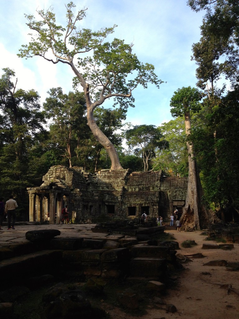We loved Ta Prohm because nature is swallowing it ever so slowly.