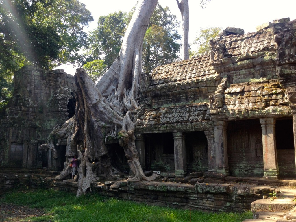 Preah Khan also has some hungry trees that decided to eat on its walls!