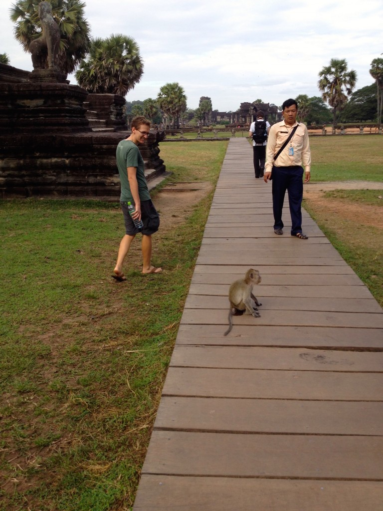 This monkey was hanging out in front of Angkor Wat and WOULD NOT move off of the boardwalk. Then he started peeing. Silly monkey!