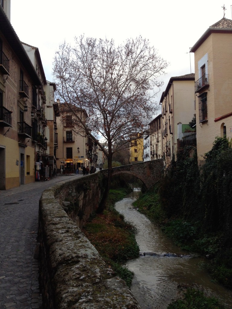 We strolled along Granada's Darro River, a cute little stream that runs between the town's two big hills.