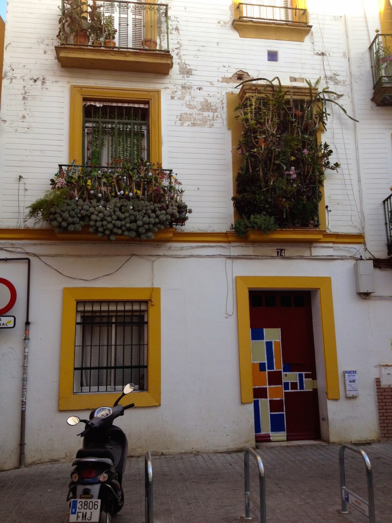 Balconies in Sevilla are all overflowing with flowers and succulents!