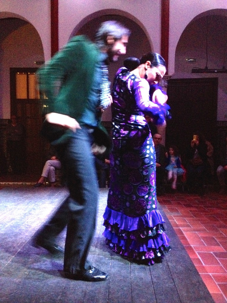 Flamenco at La Casa Del Flamenco