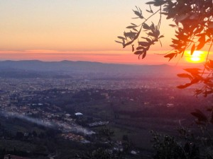 Sunset over Florence, through the leaves of an Olive tree!