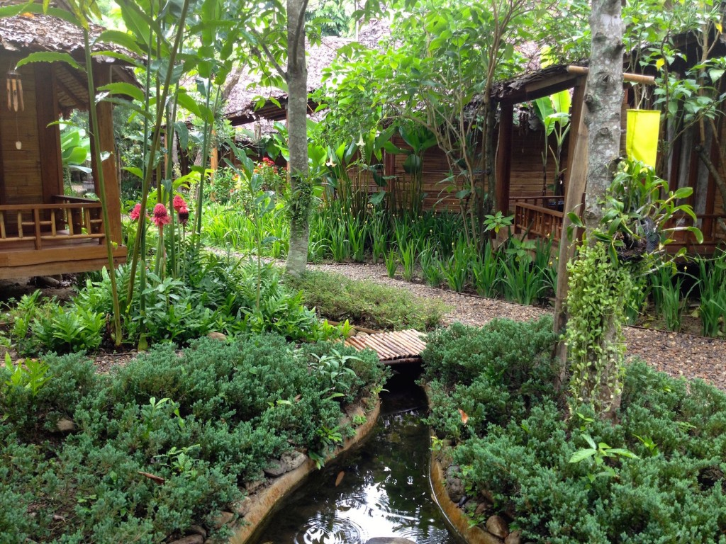 You seebeautiful gardens in Thailand, I see a risk of Dengue Fever.