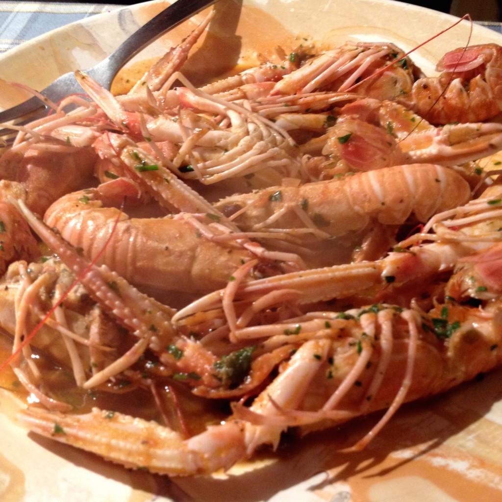 Enormous prawns!