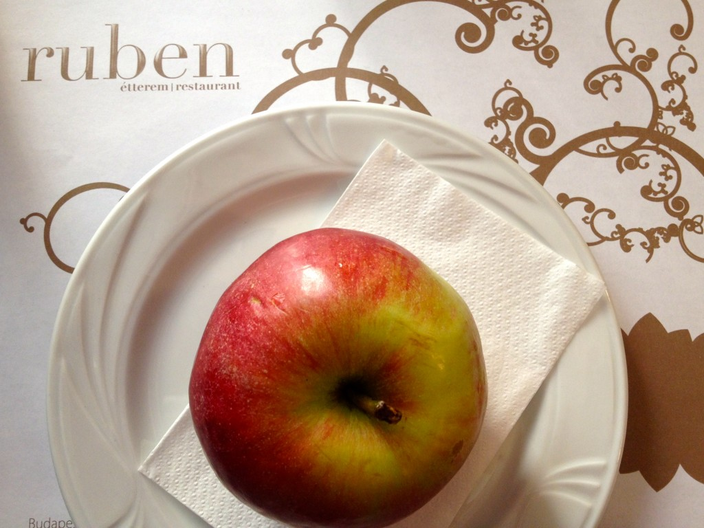 The weirdest course of them all, dessert was an apple! I like apples as much as the next lady, but it just made me chuckle when they brought this out. How do I eat it? Do I take it with me when I leave or eat it here? Should I slice it or just go for it with my hands?