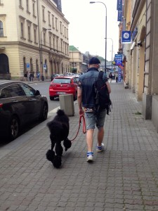 Hipsters have arrived in Prague, and they brought along their freshly groomed poodles.